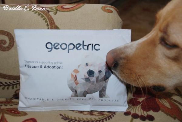 Geopetric personal dog collar