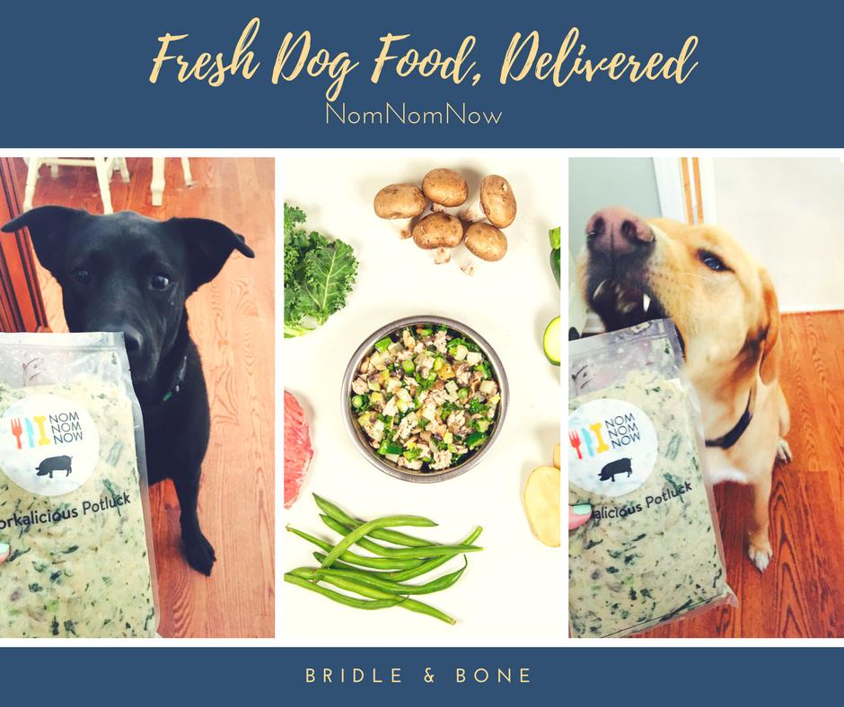 Fresh dog food NomNomNow