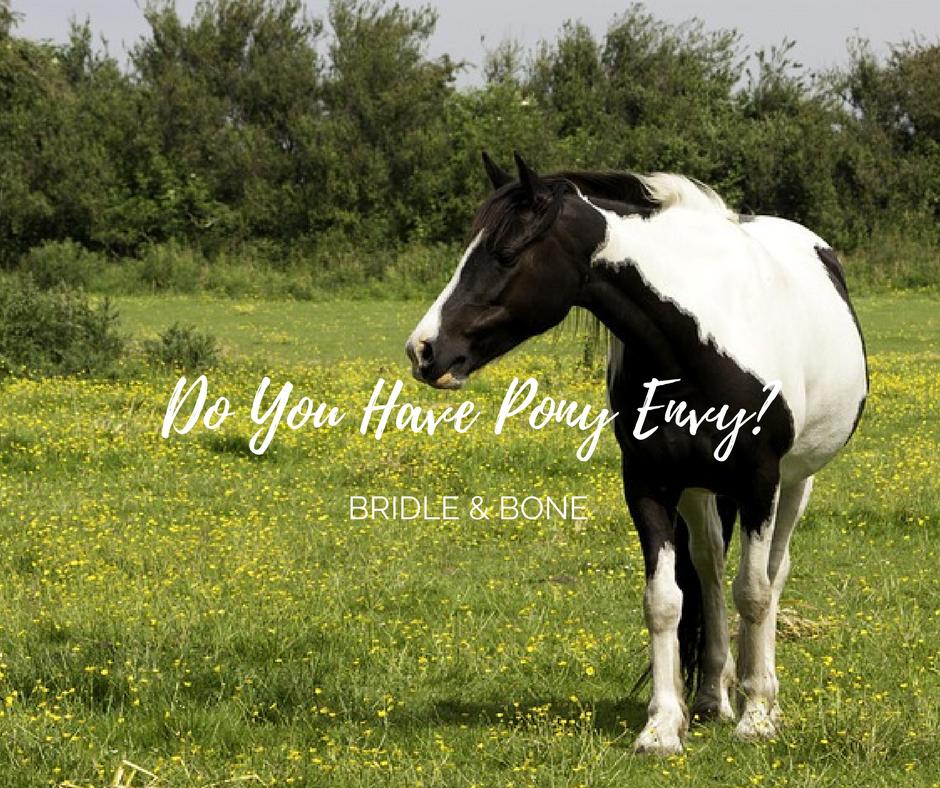Do You Have Pony Envy?