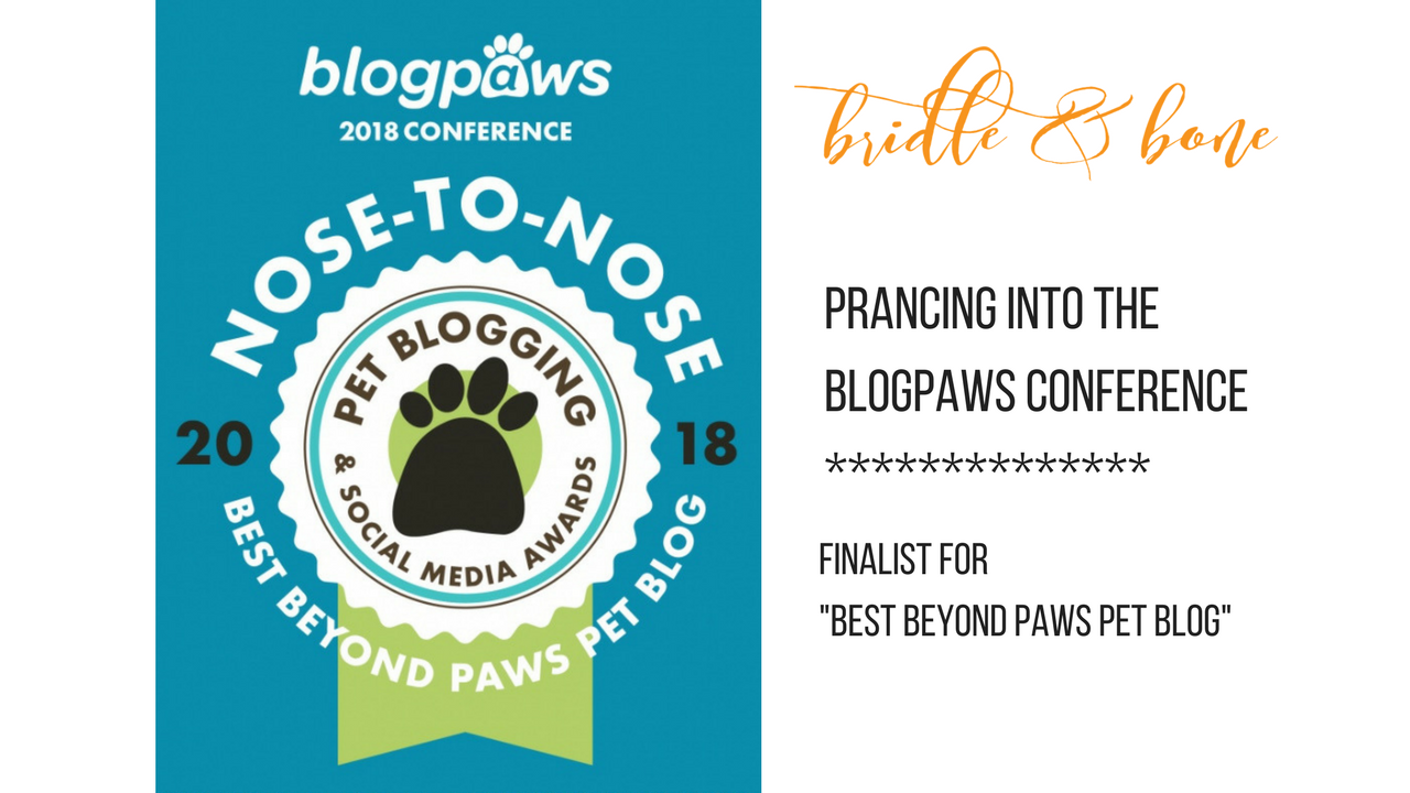 BlogPaws Finalist 2018