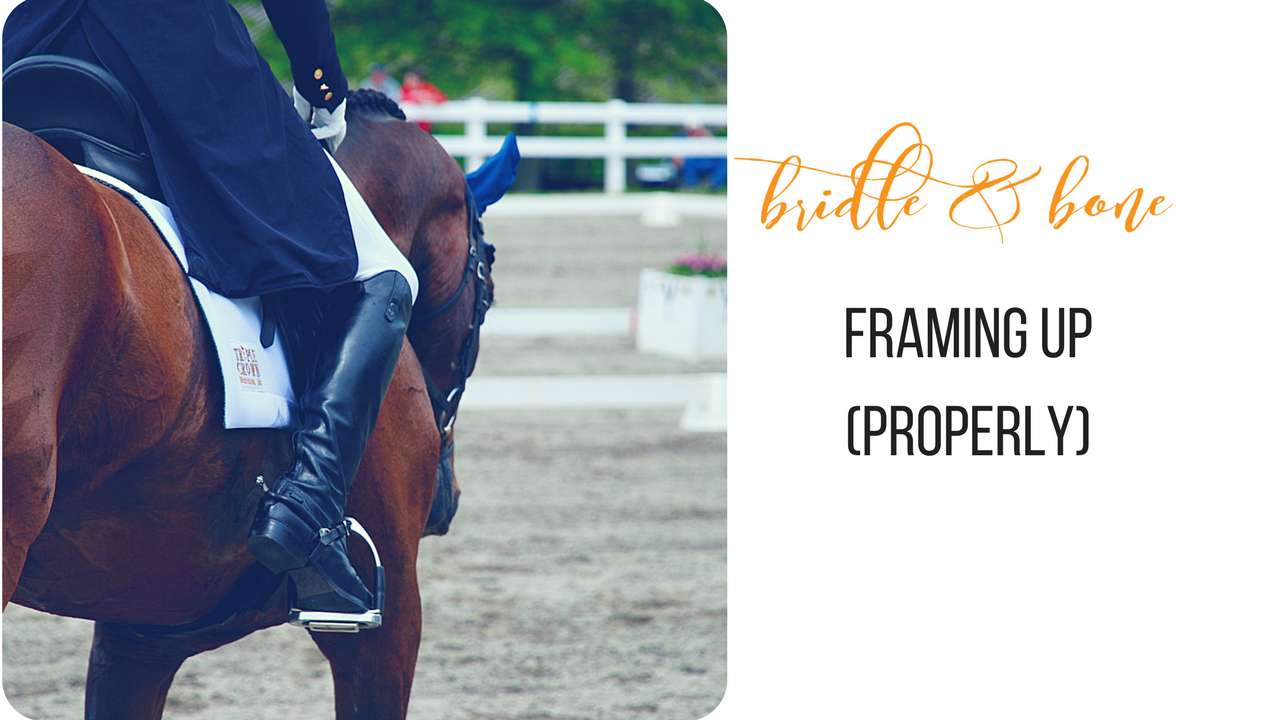 Framing Up Horses