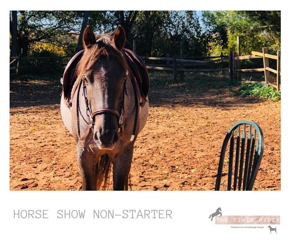 Horse Show Non-Starter