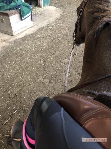 PerformaRide Flexion Breeches