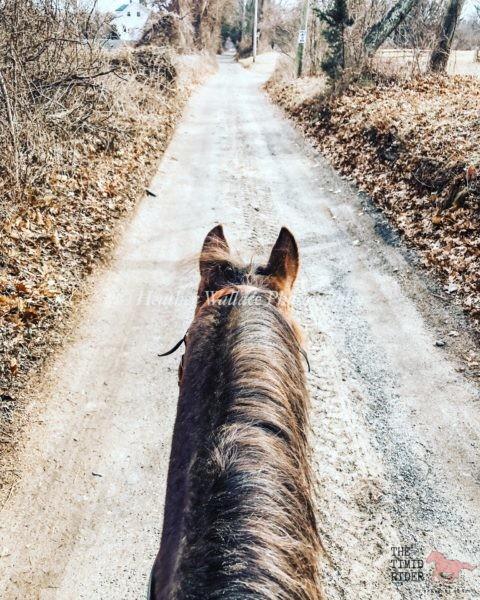 Timid Rider EZ Ride Caged Stirrup